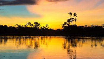 Глава Amazon пожертвует 10 млрд. долларов на улучшение экологической обстановки в мире 4