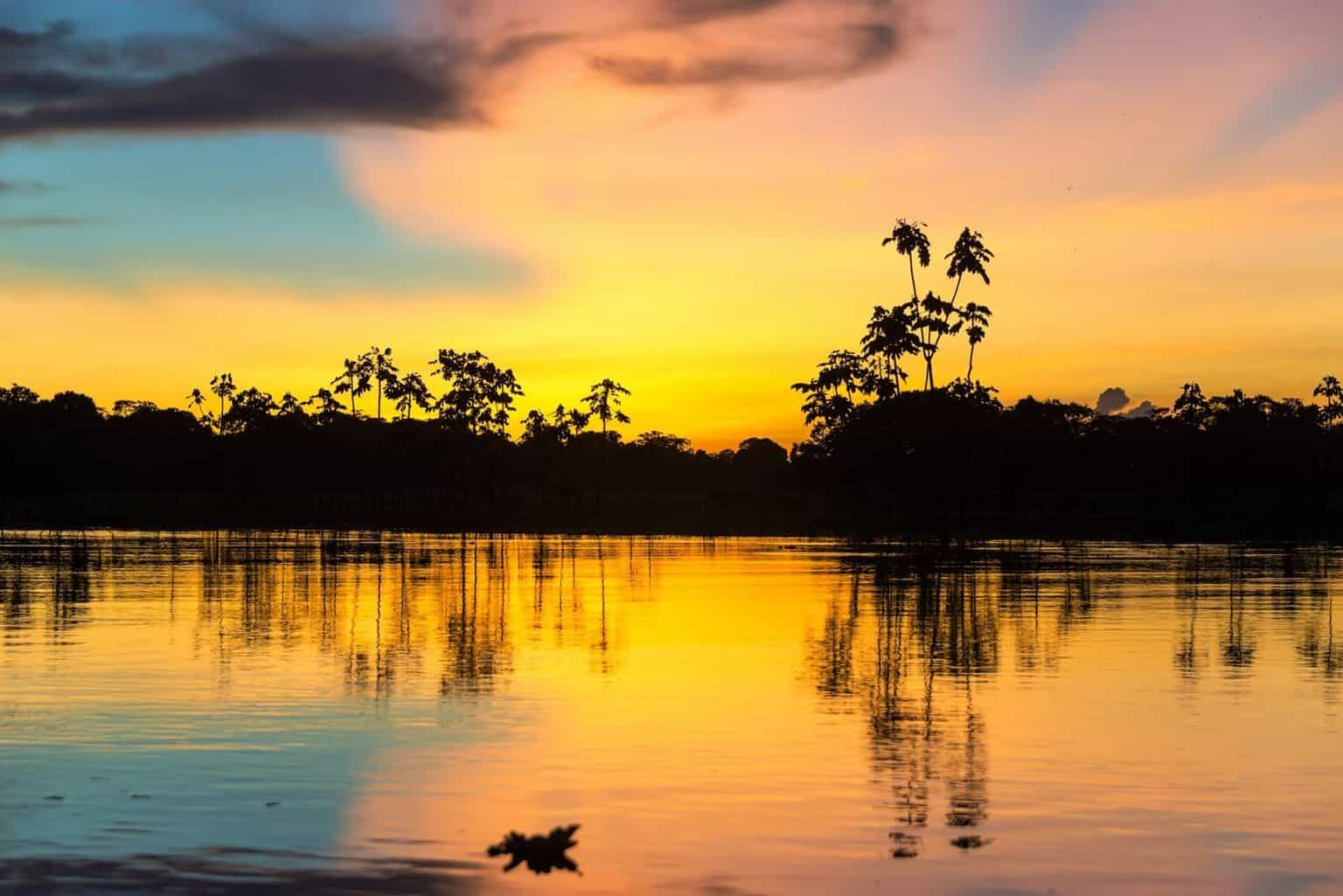 Глава Amazon пожертвует 10 млрд. долларов на улучшение экологической обстановки в мире 1