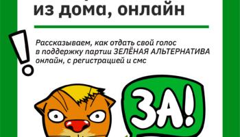 «Зелёная Альтернатива» собирает подписи на выборы в Заксобрание Челябинской области 100