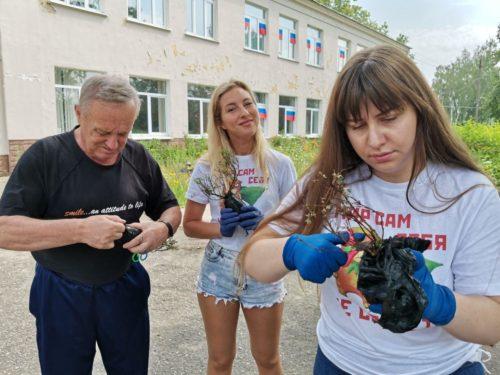 Активисты «ЗА» продолжают озеленять Подмосковье 12