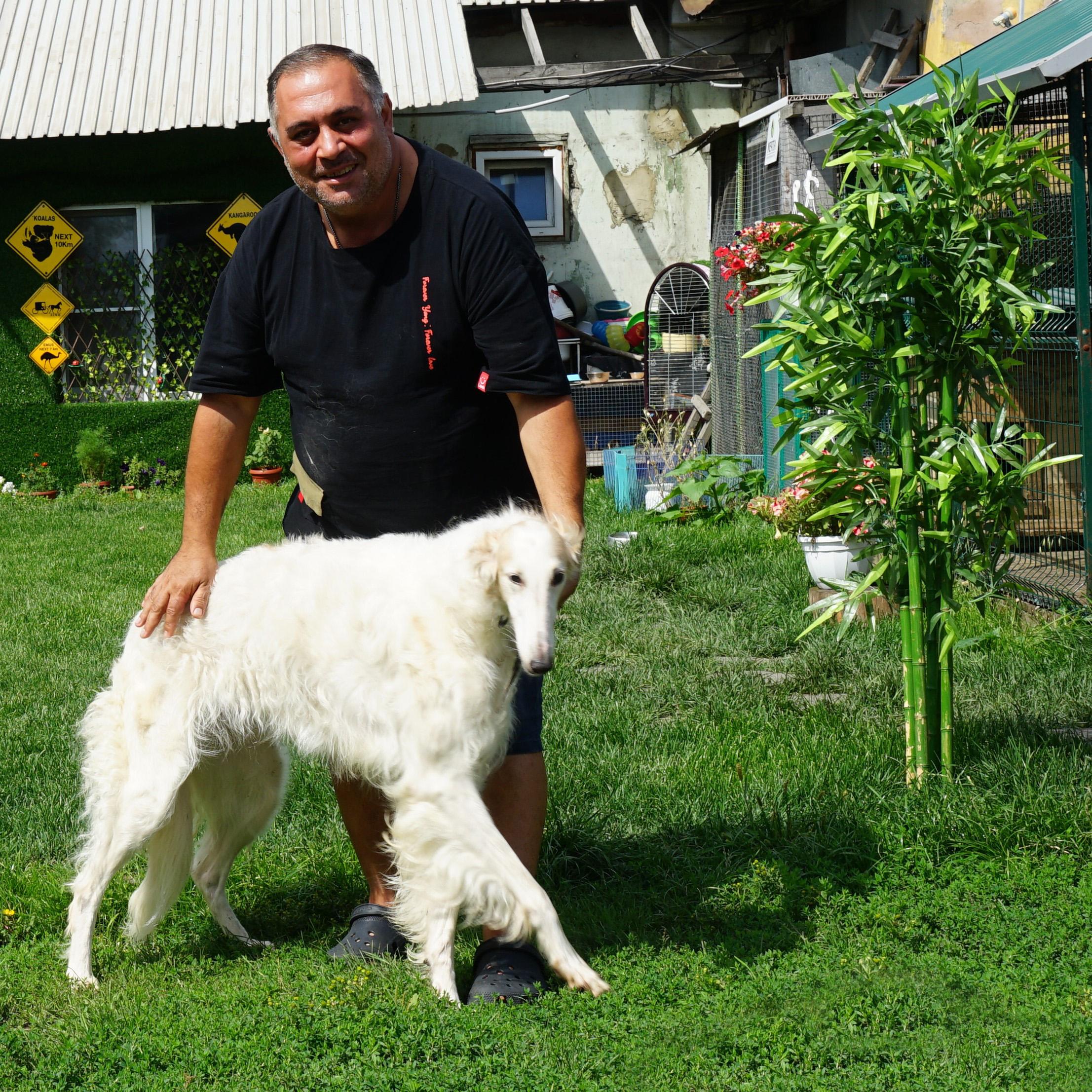 Карен Даллакян призвал к бесплатным базовым ветеринарным услугам 1
