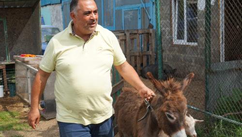 Зоозащитник Карен Даллакян требует принятия закона о запрете заработка на животных 3