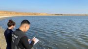 Администрация Калмыкии выясняет причины массовой гибели рыбы в Аршань-Зельменском водохранилище 10