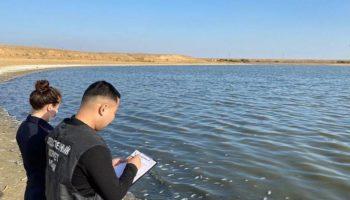 Администрация Калмыкии выясняет причины массовой гибели рыбы в Аршань-Зельменском водохранилище 28