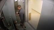 В Краснодаре живодёр избил своего пса за то, что он потерялся 3
