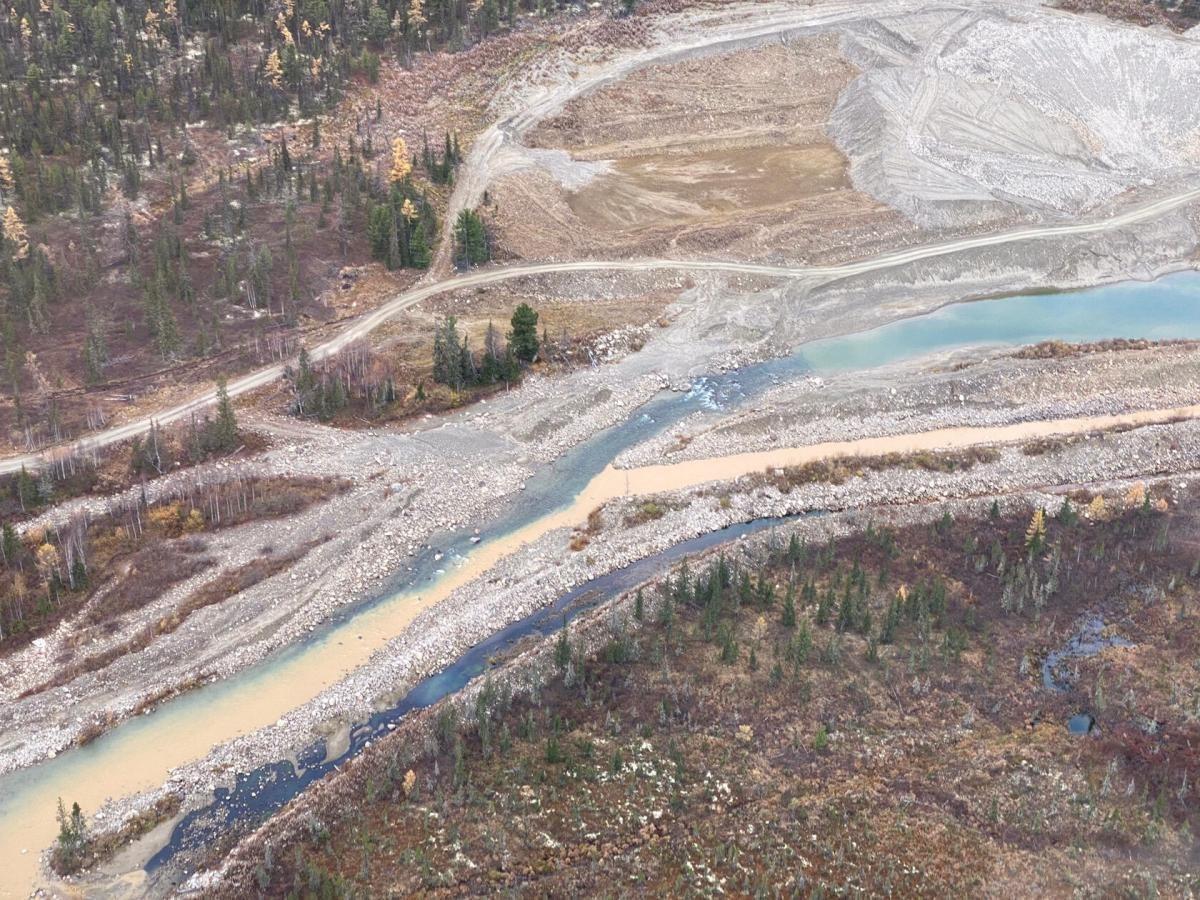 В Югре назревает экопротест против золотодобытчиков 1