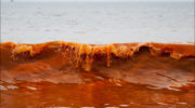 Учёный из МГУ рассказывает о природной версии катастрофы на Камчатке 1