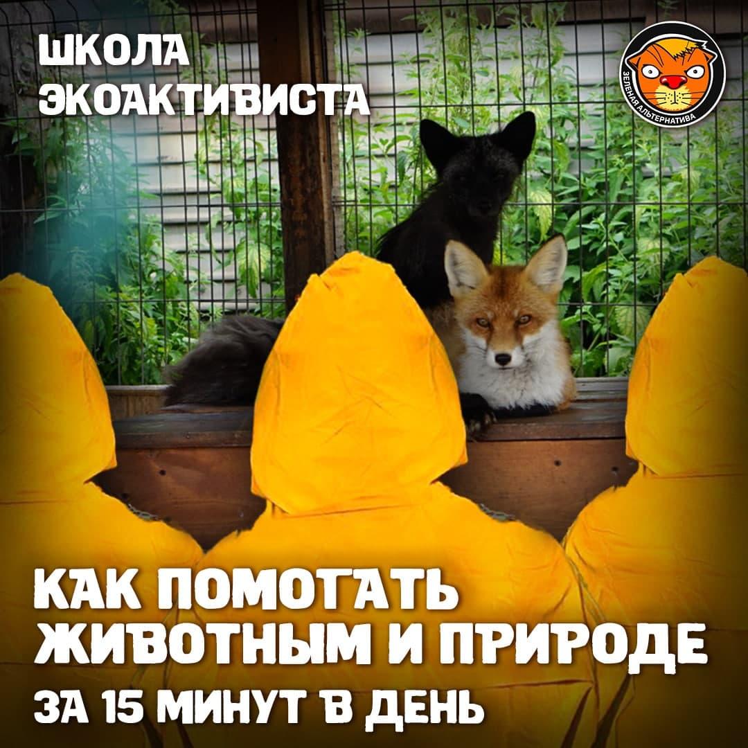 Как помогать животным и природе за 15 минут в день 1