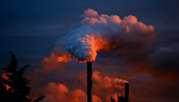В Челябинской области утвердили региональный экологический стандарт 96