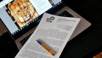 Руслан Хвостов обратился к Председателю Госдумы Володину с инициативой создания «Закона Симбы» 41
