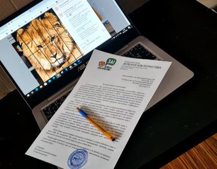 Руслан Хвостов обратился к Председателю Госдумы Володину с инициативой создания «Закона Симбы» 1