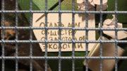 В Коми предложили использовать труд заключённых при сортировке мусора 6