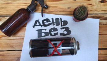 «Зелёная Альтернатива» предлагает учредить в России «День без СО2» 53